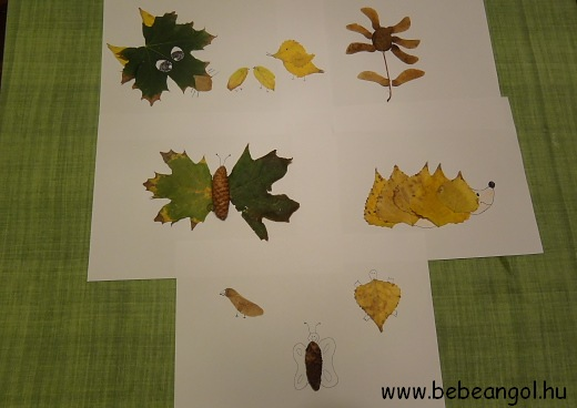 őszi falevelekből készült képek