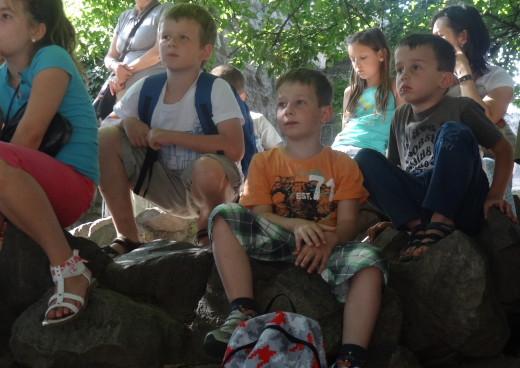 fókaetetés az állatkertben