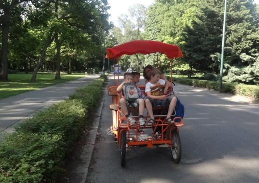 bringóhintózás a Margitszigeten