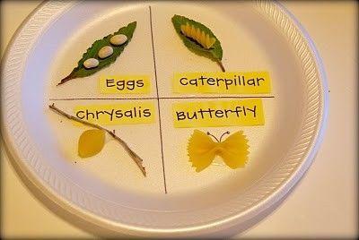 miből lesz a pillangó - kreatívan angolul a gyerekekkel