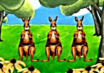that's me on TV kangaroos